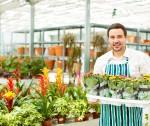 stock-photo-29044632-male-florist-working-in-garden-center-1-150x126